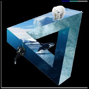 Polar Dreieck