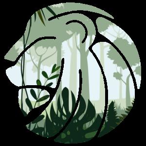 Löwe Dschungel Will Wildnis Zoo Raubtier Tierliebe