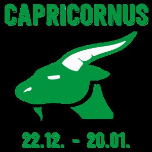 Capricornus Sternzeichen Tierkreiszeichen Horoskop