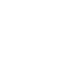 Zertifizierter Hundetrainer