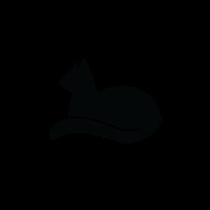 Adopt Don't Shop Katze Tierschutz
