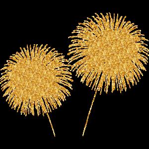 Feuerwerk Silvester Geburtstag Hochzeit Party