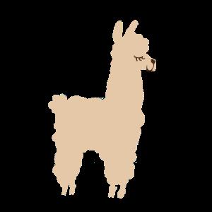 Süßes Alpaka