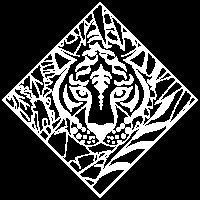 Tiger Dschungel Safari Katzen Safari Zoo Wildnis