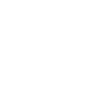 Tiger Tigerhai Tier tierisch Zoo Dschungel Wildnis