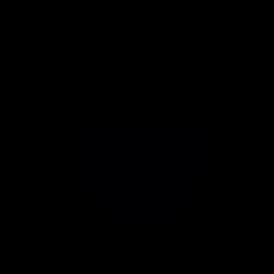 Eule geometrisch
