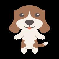 Beagle Gift Idea
