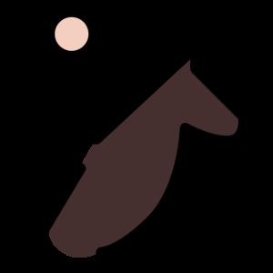 Horse Riding Cute Gift Idea