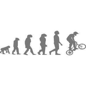 bmxEvolution
