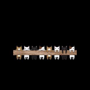 Hängende Katzen