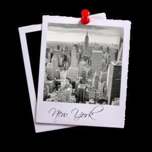 polaroid mit new york