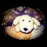 Plüsch Hund