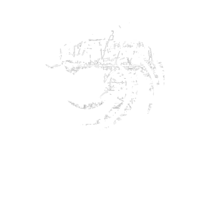 Drache Destroyed Look   Fantasy LARP RPG Geschenk