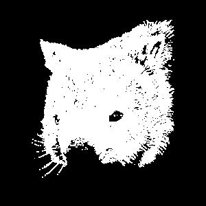 Wombat Zeichnung