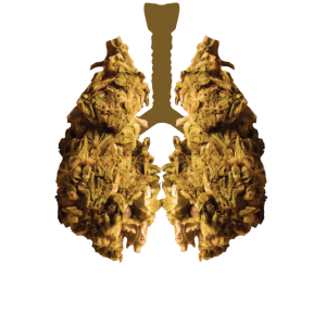 Weed Lung - Funny Tshirt