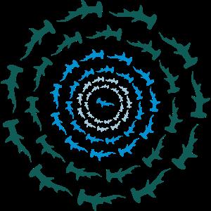 Hammerhai Circle
