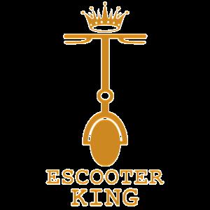 Escooter Electroroller E-Roller escooting King