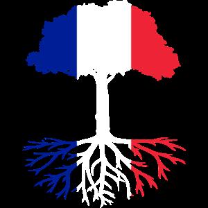 Vergiss niemals Deine Wurzeln aus Frankreich