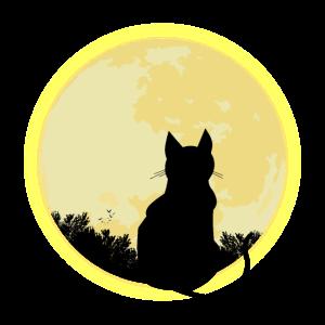 Katze schaut bei Nacht auf Vollmond