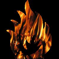 fire Feuer Lagerfeuer Holz verbrennen