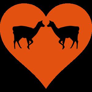 Lama Duo mit Herz - LLama des Herzens