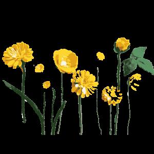 Minimalistische gelbe Blumen