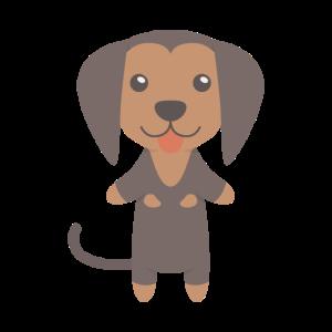 Coonhound Gift Idea