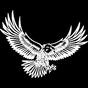 Adler - Design