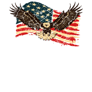 USA Amerika Flagge Adler Patriot