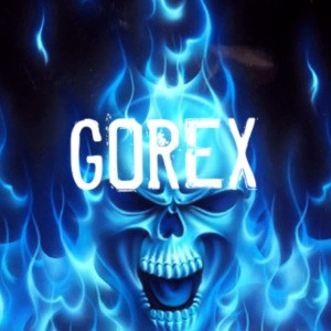 Logo GOREX teschio infuocato blu N°1