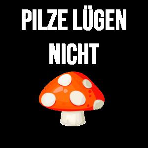 Pilze lügen nicht