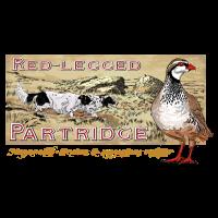 red_legged_patridge