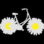 Daisy Bike 2C