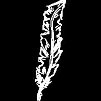 Zeichnung Feder