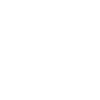 Geometric French Bulldog