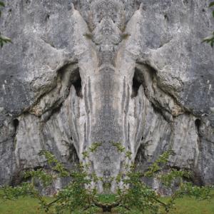Mystisches Fabelwesen im Fels - Spiegelfotografie