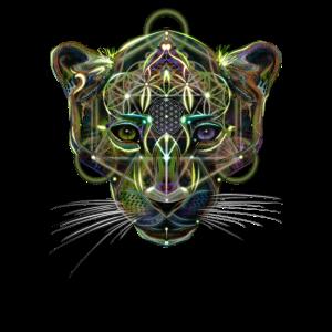 Leopard-Psy
