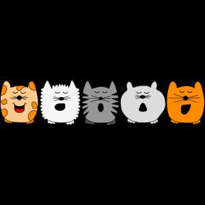 singende Katzen