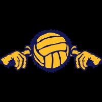 Volleyball Volleyball Ohr Finger Mund