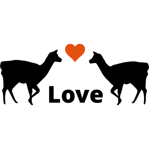 Lama Duo - Lamas mit Herz & Love
