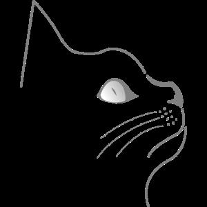 Katzen Silhouette Katze Kater Katzenauge