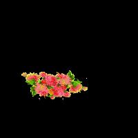 Hirsch Blumen