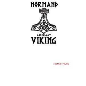 NOrmand_asc_VIkings-place