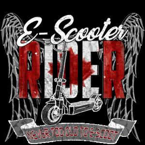 Escooter Electricscooter Kanada