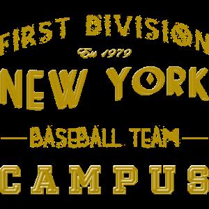 First Division New York Baseball Team Campus