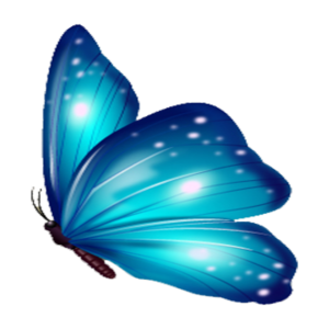 Butterfly Geschenk Shirt Blau Exotisches Tier