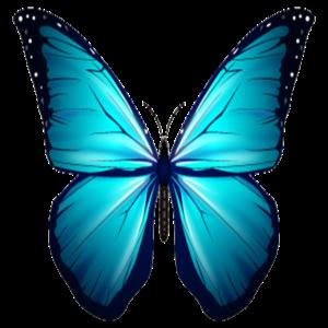 Butterfly Geschenk Shirt Braun Blau Exotische Tier