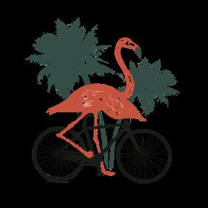 Flamingo Fahrrad Palmen Radfahrer