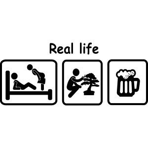 picot_Bonsaï real_life