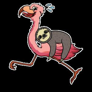 Faultier Flamingo Rennt Comic Lustig Geschenk